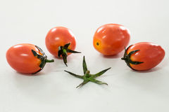 Bunch of fresh tomatoes with water drops on white background Royalty Free Stock Photography