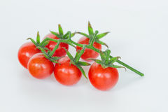 Bunch of fresh tomatoes Stock Photography