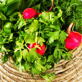 A bunch of fresh vegetables in a bowl wicker basket on white woo Royalty Free Stock Image