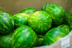 Bunch of fresh watermelons in supermarket Royalty Free Stock Photos