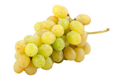 Bunch of fresh white grapes Stock Images