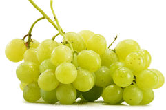 Bunch of fresh white grapes on white Stock Image