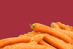 Bunch of fresh winter carrots Royalty Free Stock Photo
