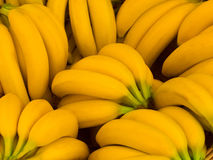 Bunch of fresh yellow bananas Stock Photo