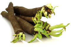 Bunch of freshly harvested black salsify Royalty Free Stock Photos