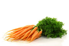 Bunch of freshly harvested carrots Royalty Free Stock Image