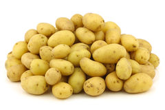 Bunch of freshly harvested dutch seed potatoes Royalty Free Stock Photo