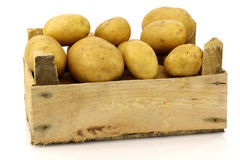 Bunch of freshly harvested potatoes in a bo Royalty Free Stock Images