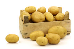 Bunch of freshly harvested potatoes in a bo Stock Photo