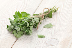 Bunch of garden oregano herb Stock Photo