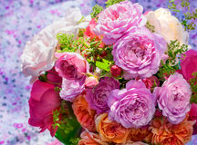 Bunch of garden roses Royalty Free Stock Images