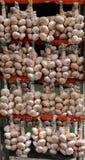 Bunch of garlic Stock Image