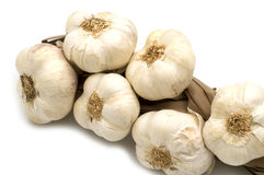 Bunch garlic Royalty Free Stock Image