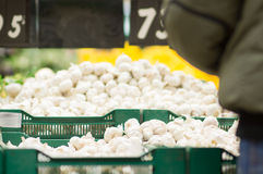 Bunch of garlic on boxes in supermarket Royalty Free Stock Photos