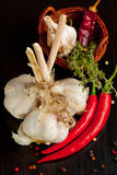 Bunch of garlic, chili pepper and thyme Stock Photo