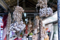 Bunch of garlic. Hanging bunch of garlic Royalty Free Stock Image