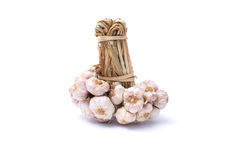 Bunch of garlic. Isolated on white background Royalty Free Stock Photography