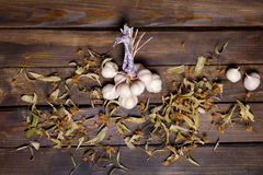 Bunch of garlic and lime flowers Royalty Free Stock Photography