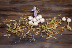 Bunch of garlic and lime flowers Stock Image