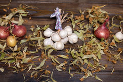 Bunch of garlic, onion and lime flowers. Wooden background Royalty Free Stock Photos