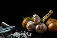 A bunch of garlic, an onion, salt and spices on a black slate royalty free stock photo