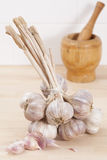 Bunch of Garlic With Pestle and Mortar. Royalty Free Stock Photo
