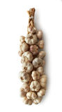 Bunch of garlic Royalty Free Stock Image