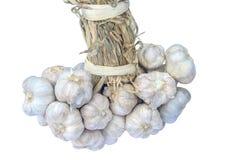 Bunch of garlics Royalty Free Stock Photo