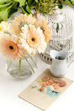 Bunch of gerbera flower with old vintage cage Stock Image