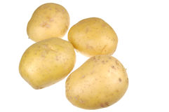 Bunch of Golden Potatoes Stock Images
