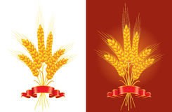 Bunch of golden wheat Royalty Free Stock Photos