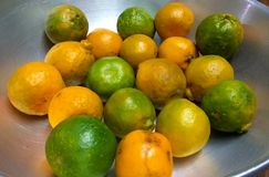 Juicy Oranges. A bunch of good and fresh oranges in a pan stock images