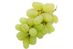 Bunch of grape Royalty Free Stock Photos