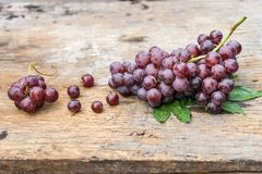 Bunch grape Royalty Free Stock Photo