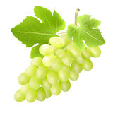 Bunch of grape. Created with gradient meshes. Royalty Free Stock Images