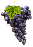 Bunch grape with leaf Stock Photos