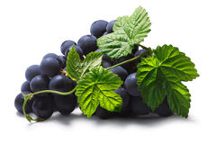 Bunch of grape with leaves, paths. Bunch of common table dark grape (Vitis vinifera) on the vine with leaves. Clipping paths, shadow separated Royalty Free Stock Image