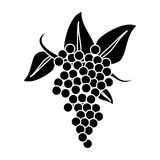 Bunch grape wine icon pictogram Royalty Free Stock Photography
