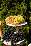 Bunch of grape on wooden stand outdoor winemakers stock image