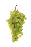 Bunch of grapes(0).jpg Stock Photo