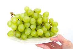 Bunch of grapes. Hand with green grapes on white plate . isolated  background Stock Photography