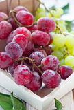 Bunch of grapes. And leaf Stock Images