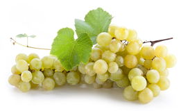 Bunch of grapes. Royalty Free Stock Images