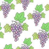 Bunch of grapes on a background. A fancy pattern. Suitable as wallpaper in the kitchen and background for gift wrapping. Vector royalty free illustration