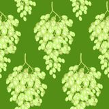 Bunch of grapes on a background. A fancy pattern. Suitable as wallpaper in the kitchen and background for gift wrapping. Vector vector illustration