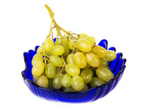 Bunch of grapes in a blue plate Royalty Free Stock Image
