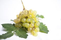 Bunch of grapes stock images