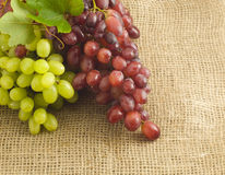 Bunch of grapes on burlap Stock Photos