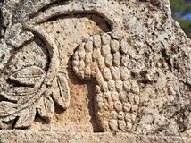 Bunch of Grapes Carved on Limestone at Jerash Stock Image