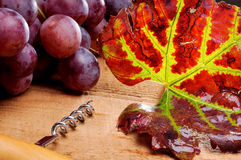 Bunch of grapes and corkscrew Stock Photo